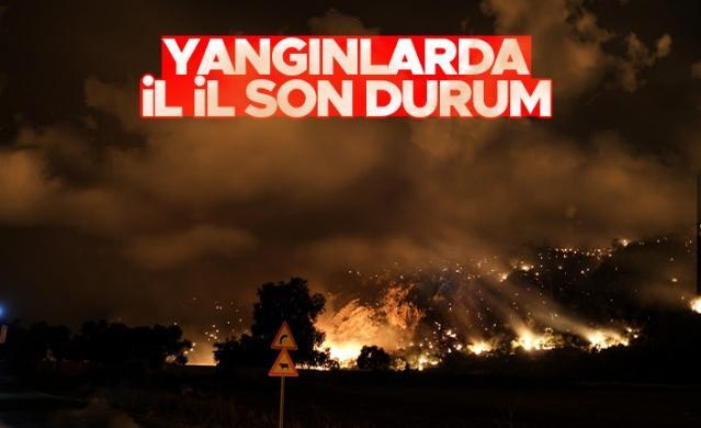Günlerdir süren orman yangınları ülkemizi ateş çemberine döndürdü. İtfaiye ekiplerinin ve vatandaşların söndürülmesi adına yoğun çaba sarf ettiği yangınlarda büyük ölçüde ormanlık alan zarar gördü.