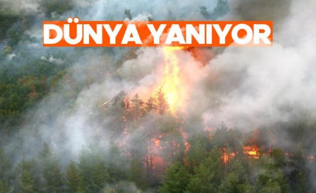 Dünya genelinde Avrupa, ABD, Rusya Meksika, Kanada ve Orta Doğu ülkeleri başta olmak üzere 2021 yılı içerisinde meydana gelen yangınlardan milyonlarca hektar ormanlık alan etkilenirken, aktif yangınlarda mücadele devam ediyor.  Avrupa'da ve çevresindeki ülkelerde çıkan orman yangınlarına yönelik uydu görüntülerini ve yangın verilerini paylaşan Avrupa Orman Yangını Bilgi Sistemi'ne (EFFIS) göre, Avrupa'da yalnızca 2021 yılı içinde yüzbinlerce hektarlık alan yandı. EFFIS'in verilerine göre, 2021 yılında 43 ülkede toplamda bin 831 orman yangını meydana gelirken, 433 bin 700 hektarlık alan yandı.