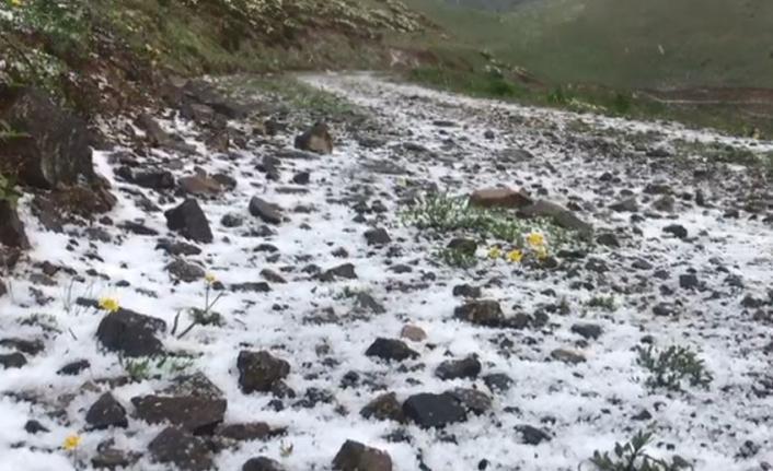 Artvin'in dağları Haziran ayında yeniden beyaza büründü