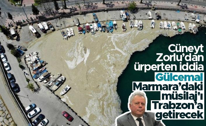 Cüneyt Zorlu; Gülcemal, Marmara'daki müsilaj'ı Trabzon'a getirecek
