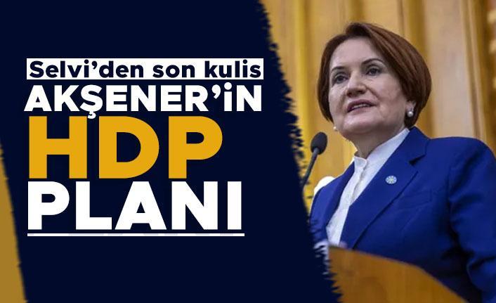 Hürriyet yazarı Selvi: Akşener, HDP'yi millet ittifakının dışında tutmak istiyor