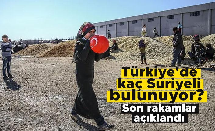 Türkiye'de kaç Suriyeli bulunuyor? Son rakamlar açıklandı