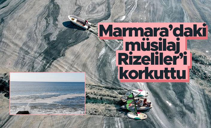 Marmara Denizi'ndeki müsilaj Rizeliler'i korkuttu
