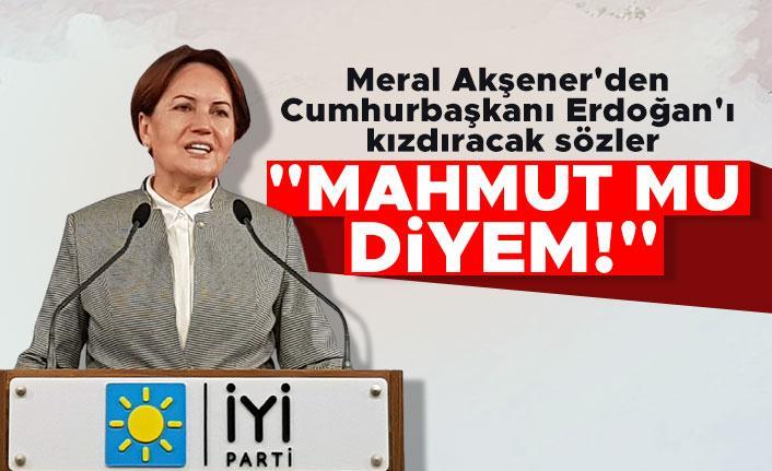 """Meral Akşener'den Erdoğan'ı kızdıracak sözler: """"Mahmut mu diyem!"""""""