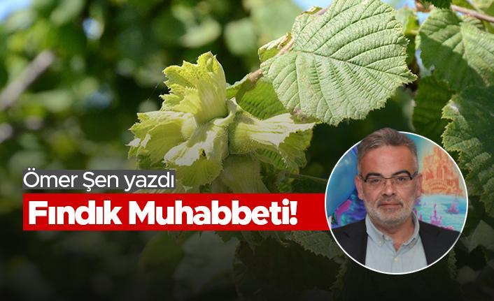 Ömer Şen: Fındık Muhabbeti!