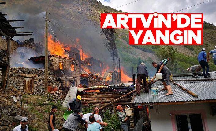 Artvin Yusufeli'nde yangın