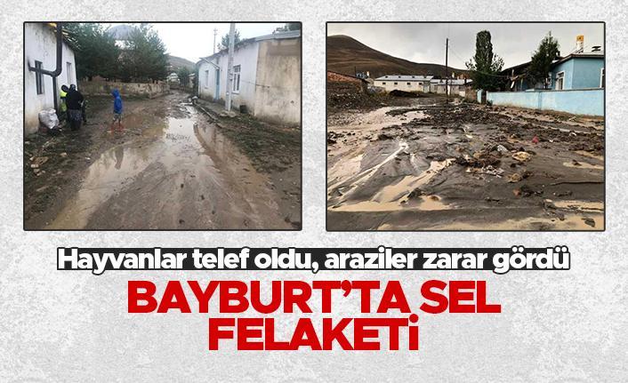 Bayburt'ta sel felaketi - Hayvanlar telef oldu, araziler zarar gördü