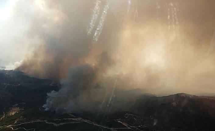 Manavgat'ta alevlerle mücadele sürüyor