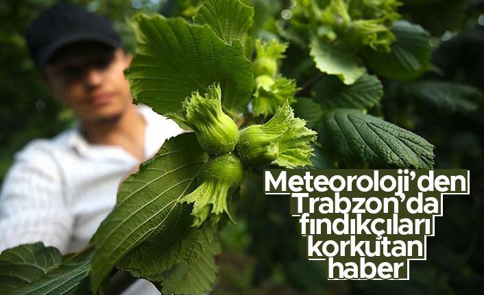 Meteoroloji'den Trabzon'da fındıkçıları korkutan haber