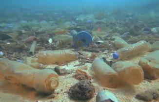 Denizler tehlike altında: 11 ton maske ve eldiven çıkarıldı