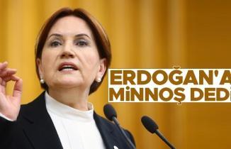 Meral Akşener, Erdoğan'a ''minnoş'' dedi
